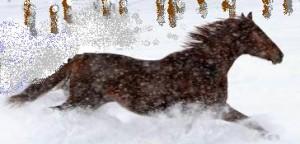 _caballo_en_la_nieve